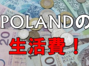 zloty-waluta-pozyczki-bez-bik-gdzie
