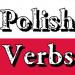 ポーランドの基本動詞をまとめたよ!